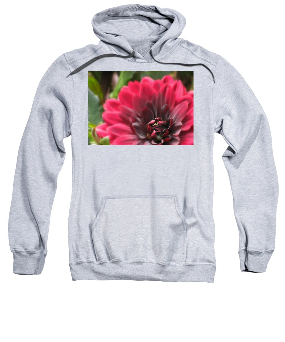 Flowers Sweatshirt featuring the photograph Soft Whisper by Deborah Crew-Johnson