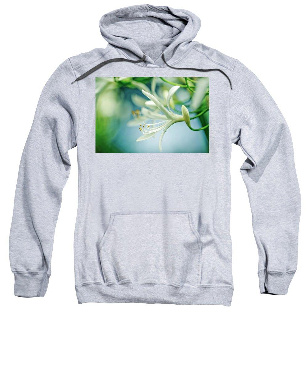 Soft Focus Sweatshirts