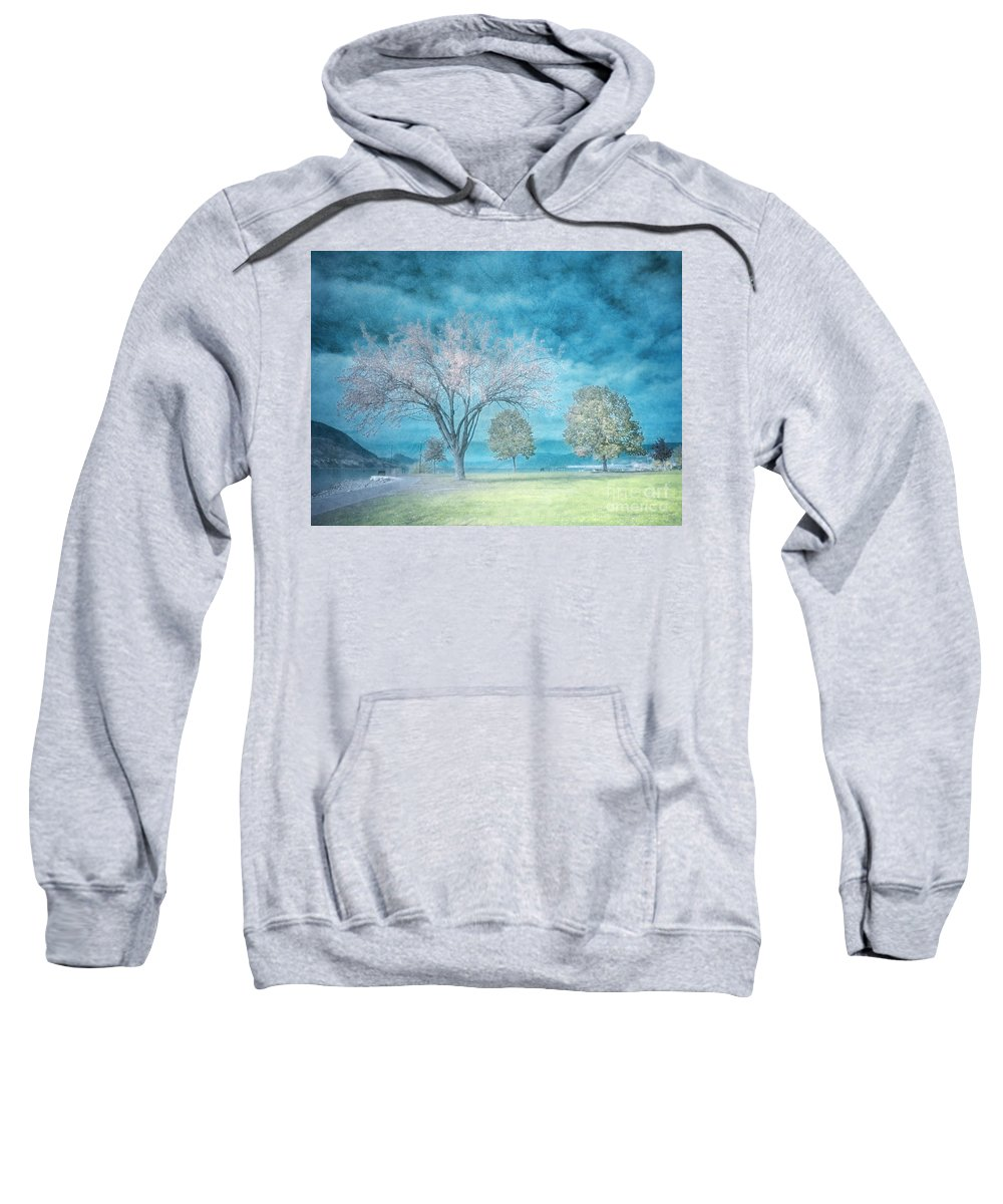 Texture Sweatshirt featuring the photograph Softly by Tara Turner