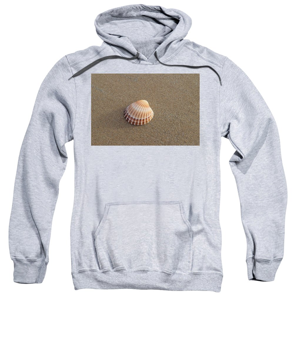 Solitary Sweatshirt featuring the photograph Solitary Cockle Shell by Adrian Wale