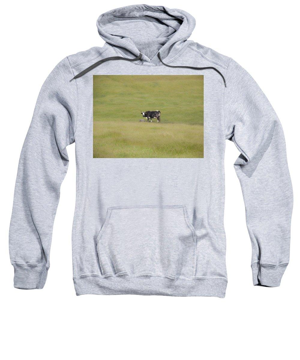 Landscapes Sweatshirt featuring the photograph Solitude by Karen W Meyer