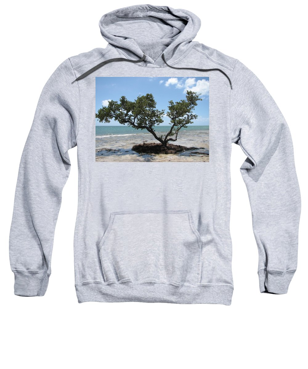 Beach Sweatshirt featuring the photograph Solitude by Stacey May