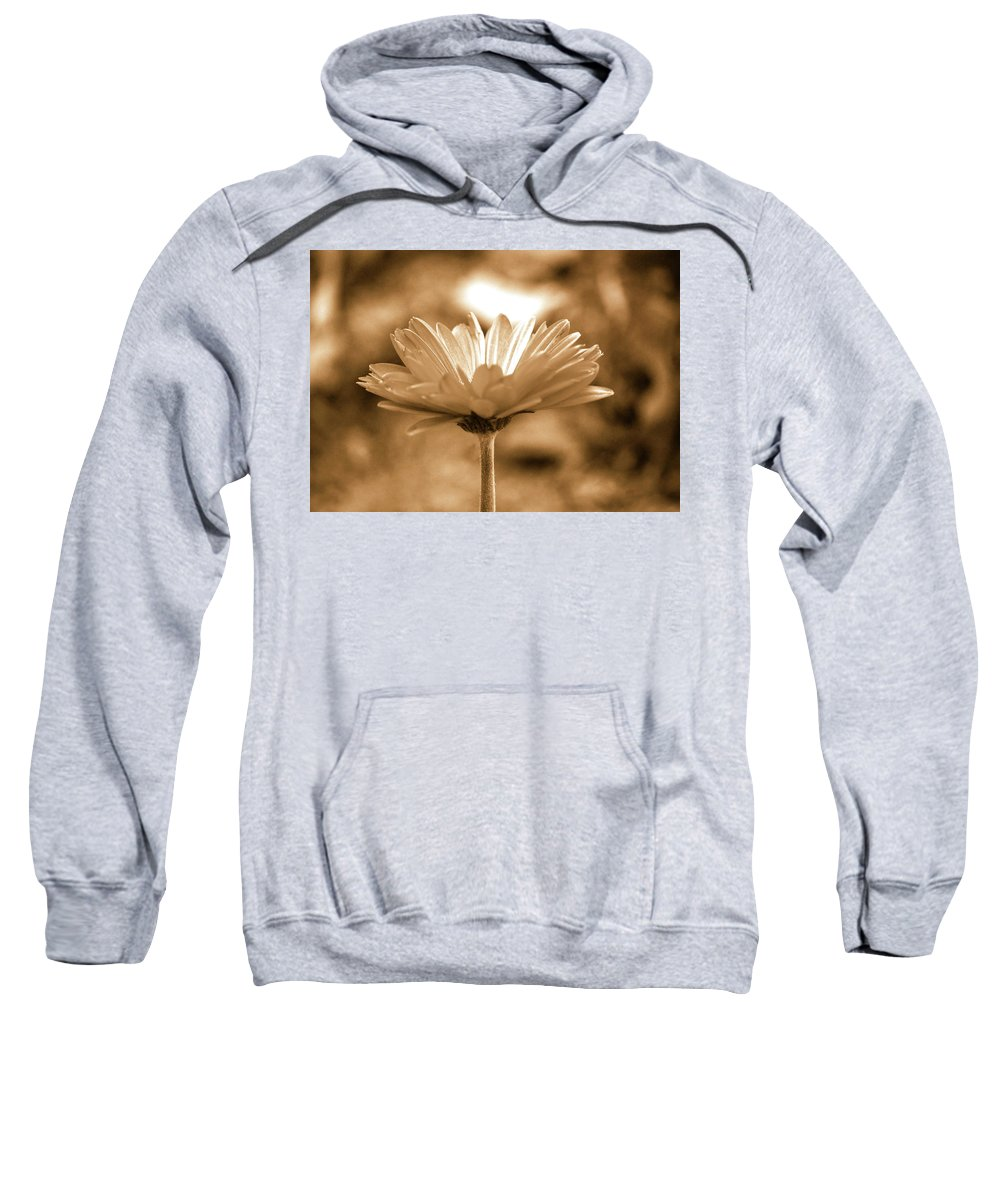 Daisy Sweatshirt featuring the photograph Some Shine by Lori Tambakis