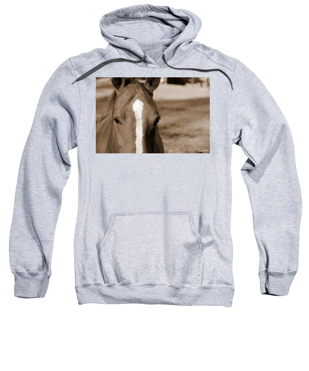 Speechless Sweatshirt featuring the photograph Speechless by Ed Smith