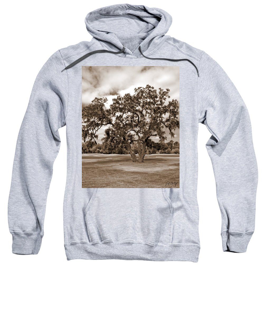 Canvas Sweatshirt featuring the photograph Spreading Tree by Phill Doherty