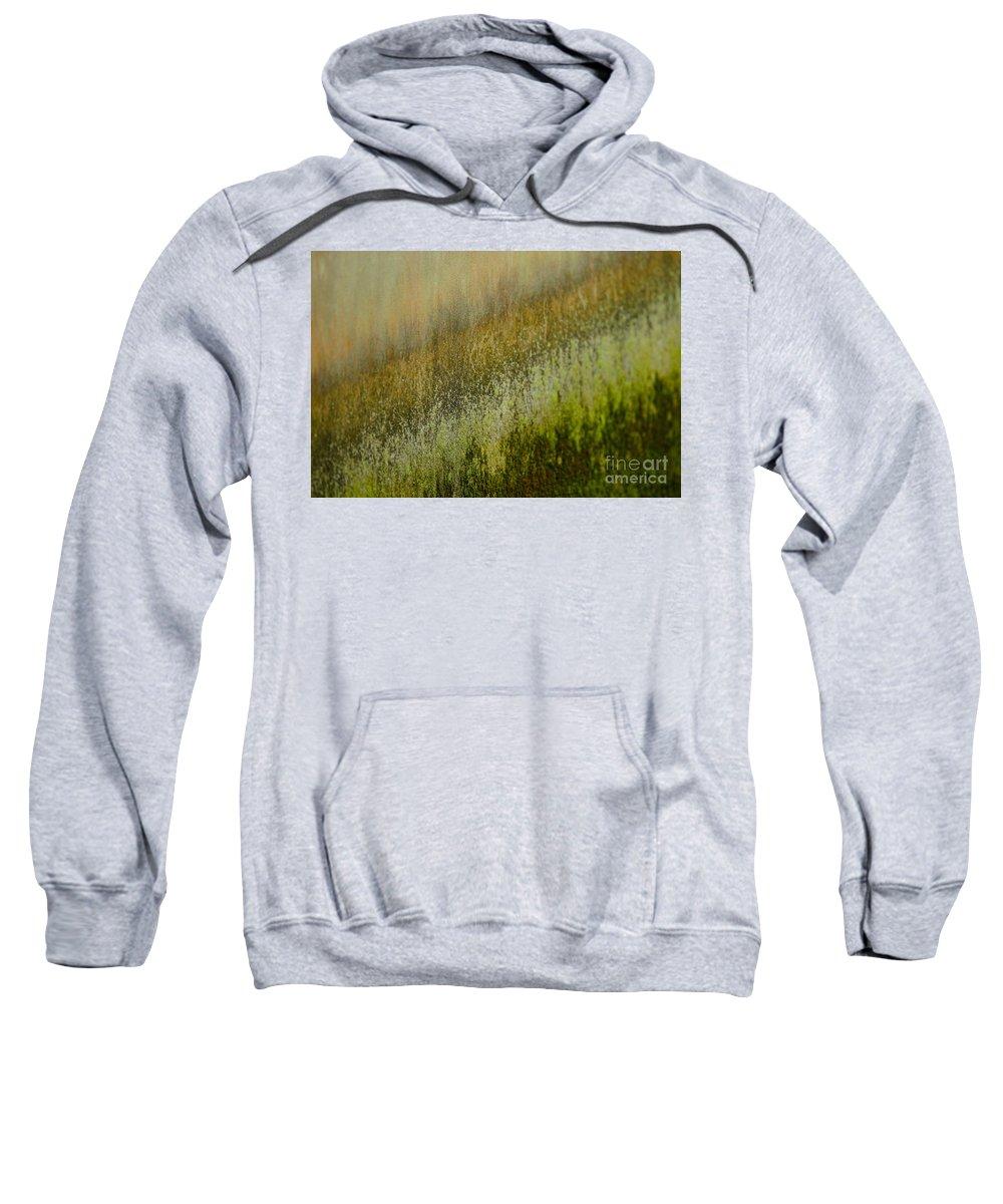 Fungus Sweatshirt featuring the photograph Spring Abstract by MingTa Li