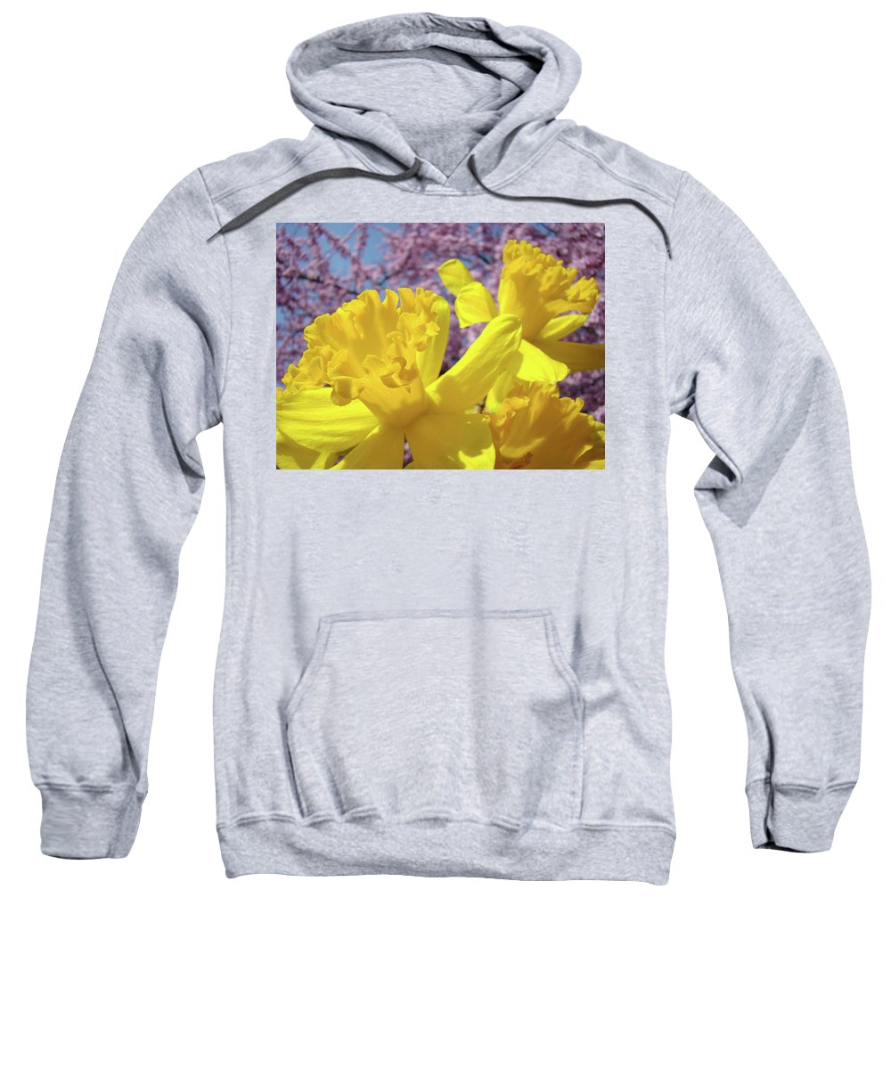 Flowers Sweatshirt featuring the photograph Spring Art Prints Yellow Daffodils Flowers Pink Blossoms Baslee Troutman by Baslee Troutman