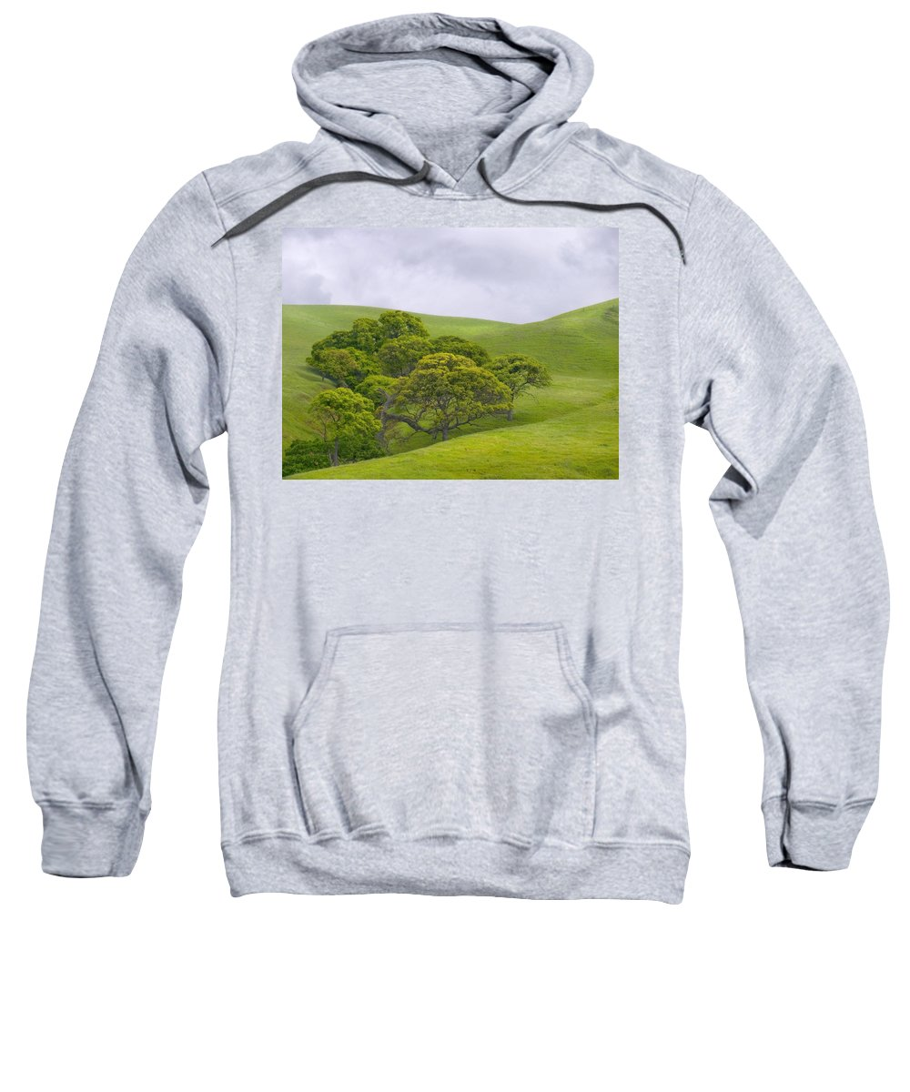 Landscape Sweatshirt featuring the photograph Spring At Del Valle by Karen W Meyer
