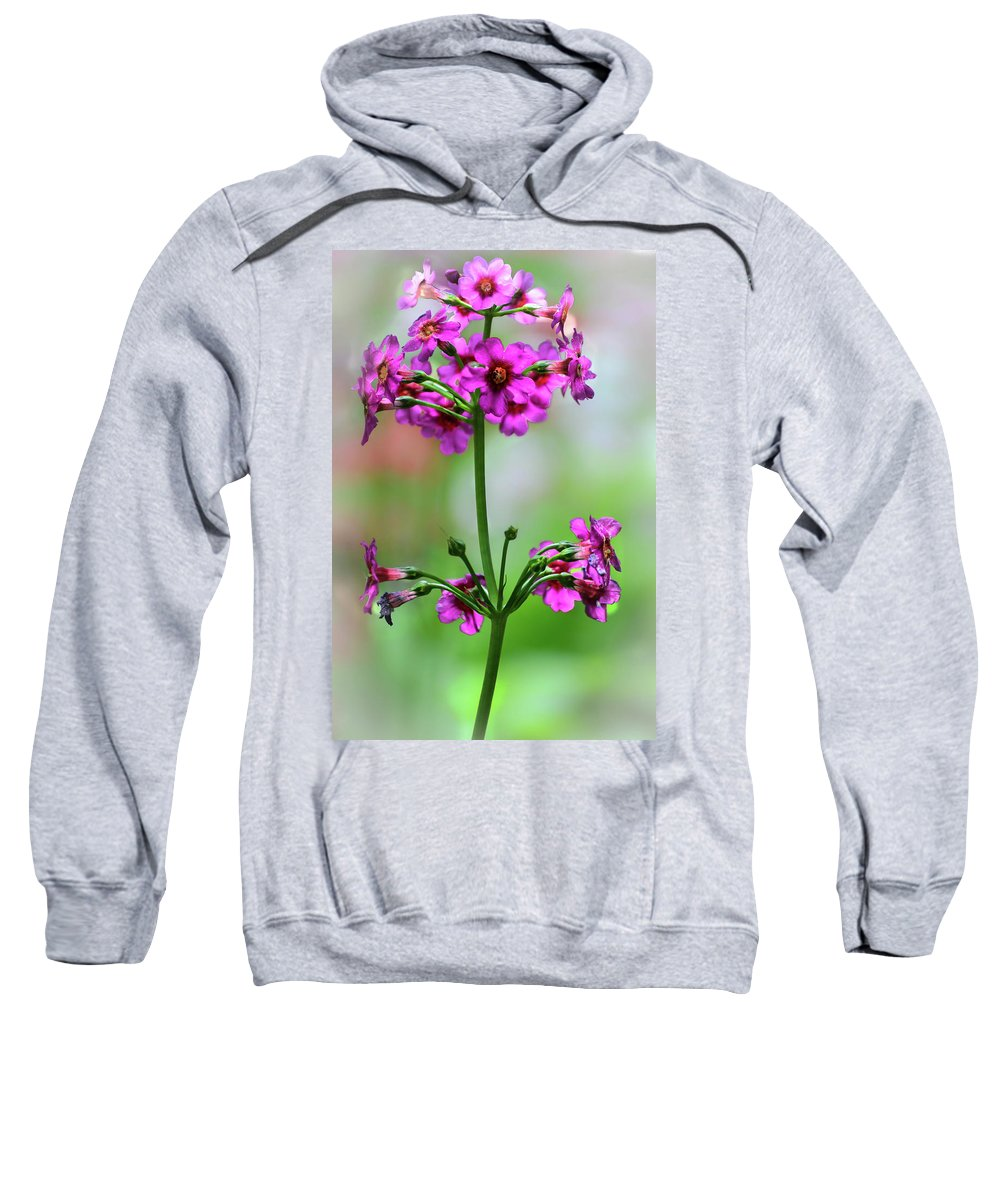 Cleveland Sweatshirt featuring the photograph spring Beauty by Stewart Helberg