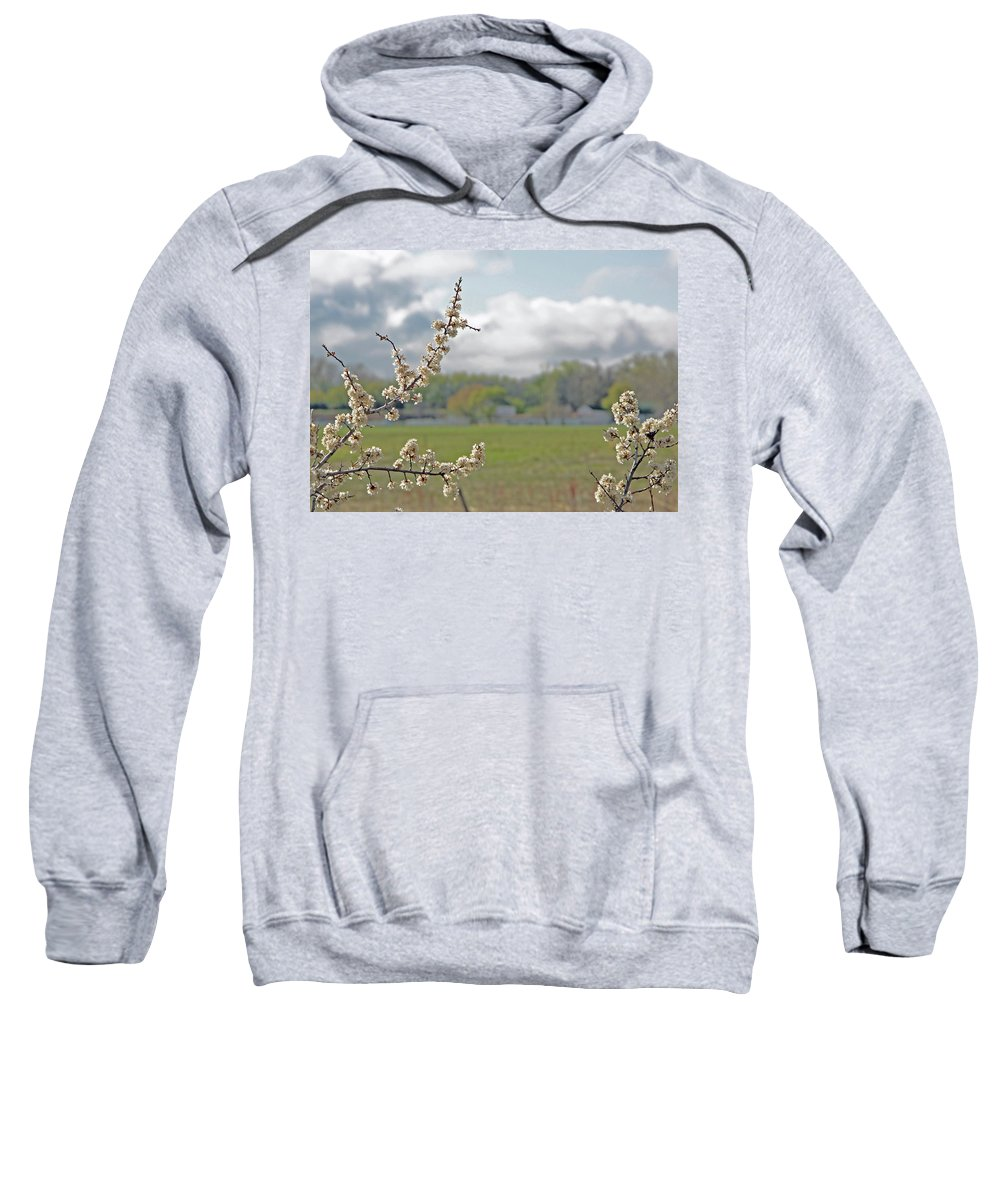 Boulder Sweatshirt featuring the photograph Spring Blossoms by Chris Oh