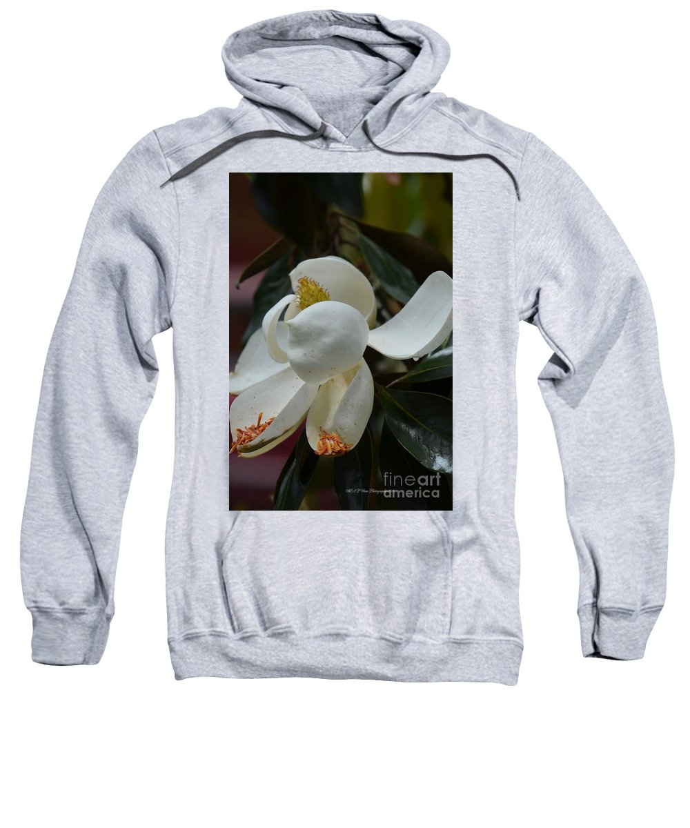 Spring Floral Sweatshirt featuring the photograph Spring Floral by Maria Urso