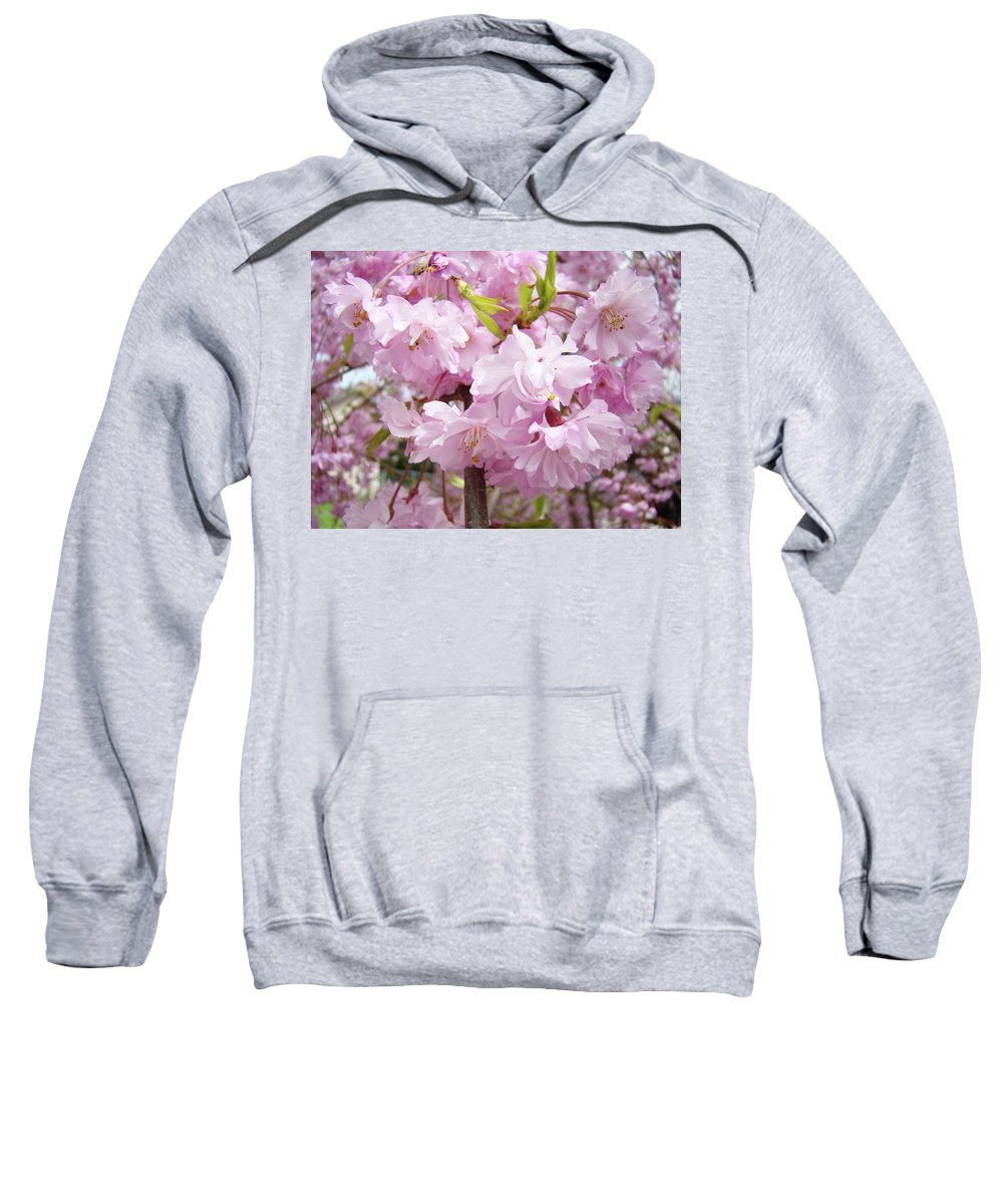 Tree Sweatshirt featuring the photograph Spring Flowering Trees Art Prints Pink Flower Blossoms Baslee by Baslee Troutman