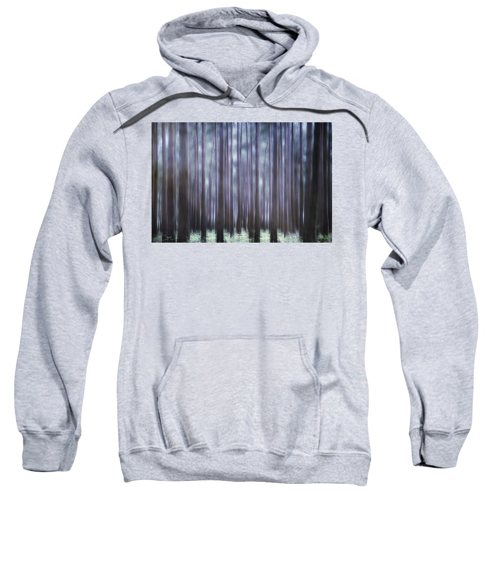 Forest Sweatshirt featuring the photograph Spring Forest by Joana Kruse