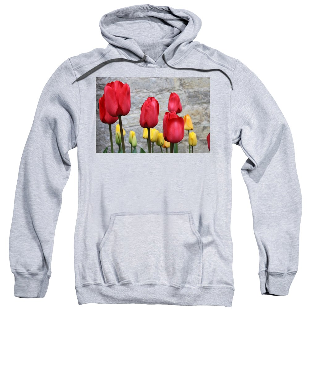 Tulips Sweatshirt featuring the photograph Spring Tulips by Lauri Novak