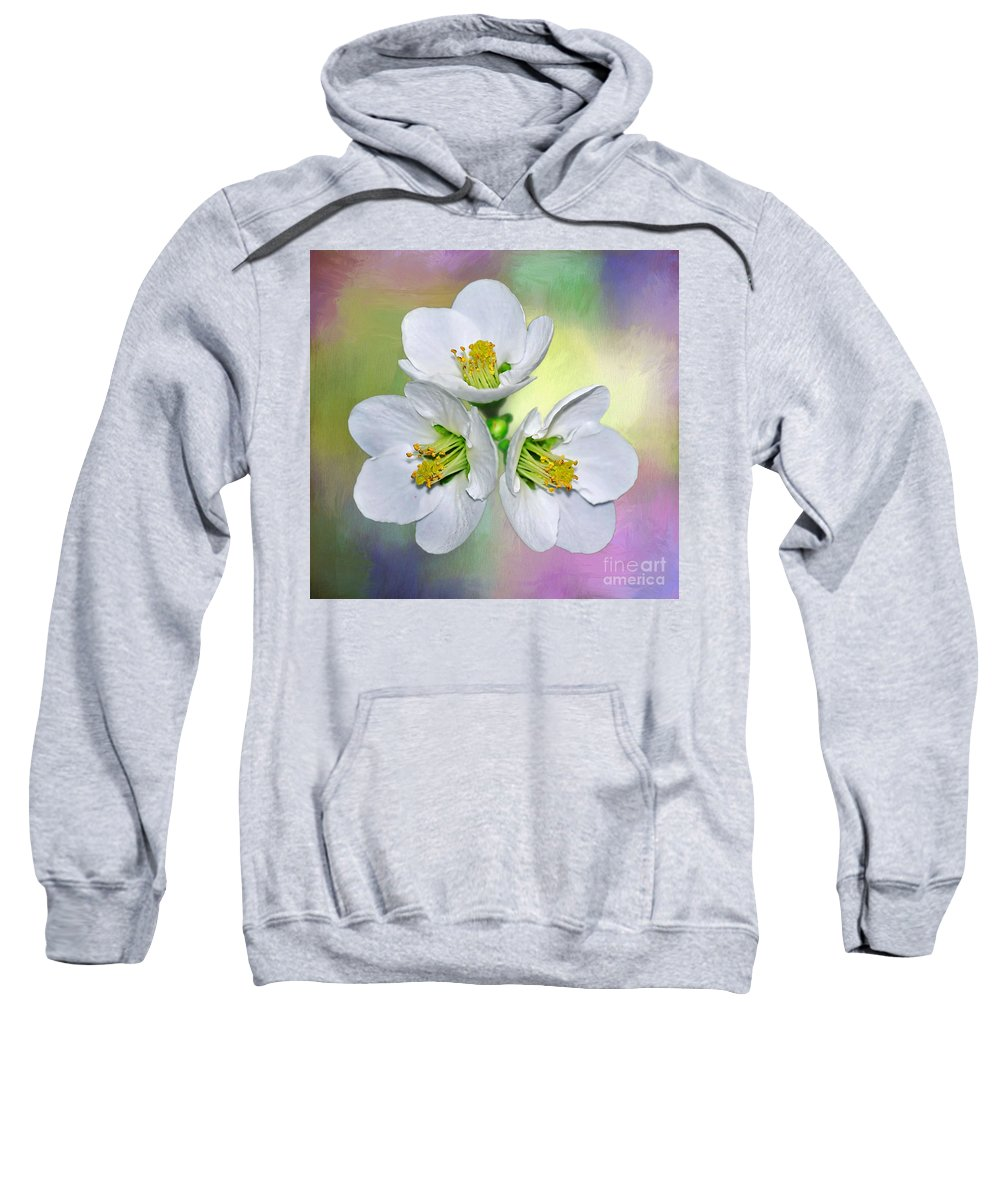 Photography Sweatshirt featuring the photograph Springtime Triplets By Kaye Menner by Kaye Menner