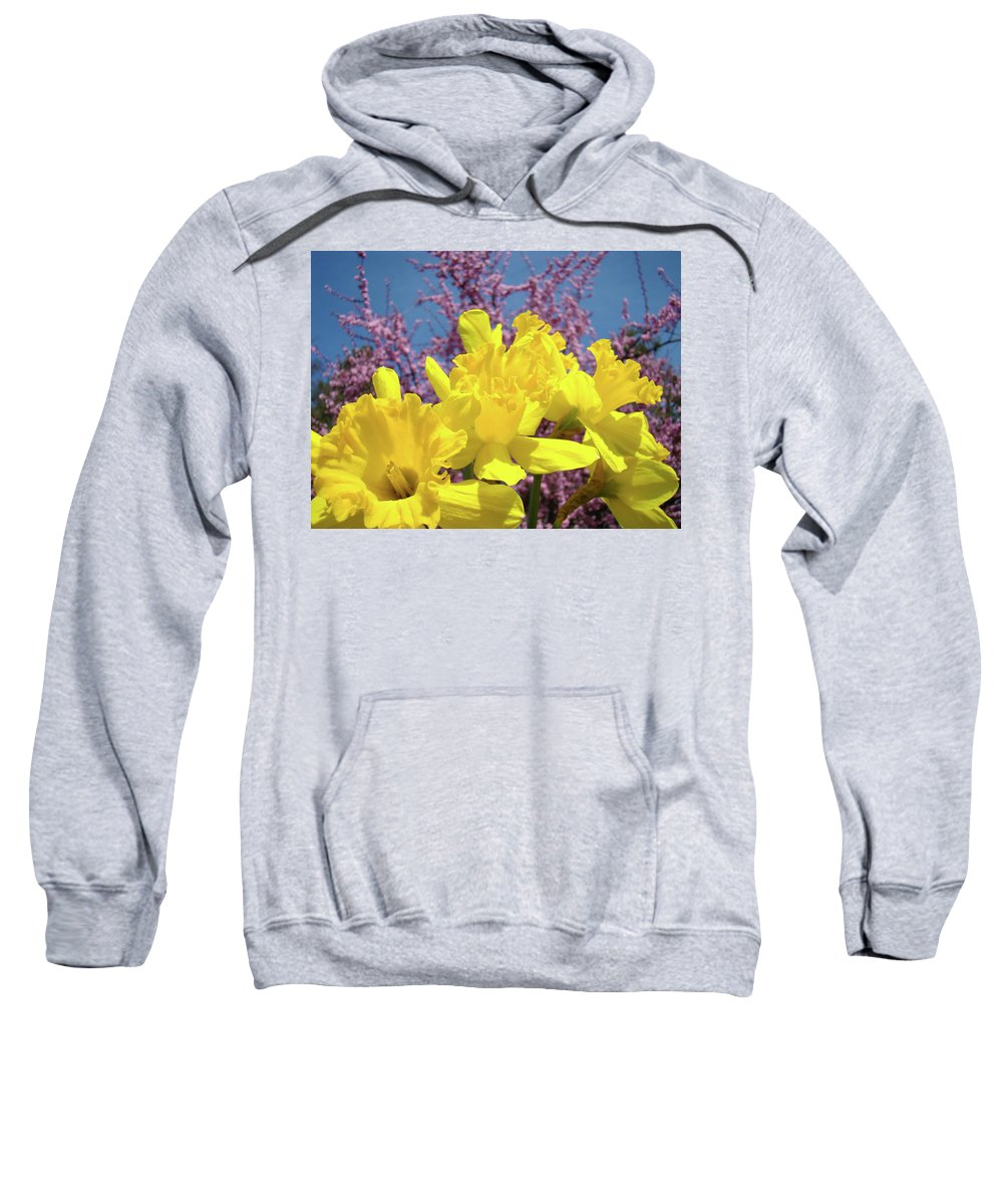 Nature Sweatshirt featuring the photograph Springtime Yellow Daffodils Art Print Pink Blossoms Blue Sky Baslee Troutman by Baslee Troutman
