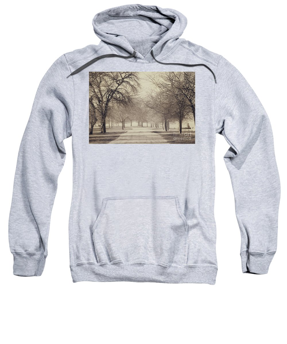 Trees Sweatshirt featuring the photograph Stand Where I Stood by Dana DiPasquale