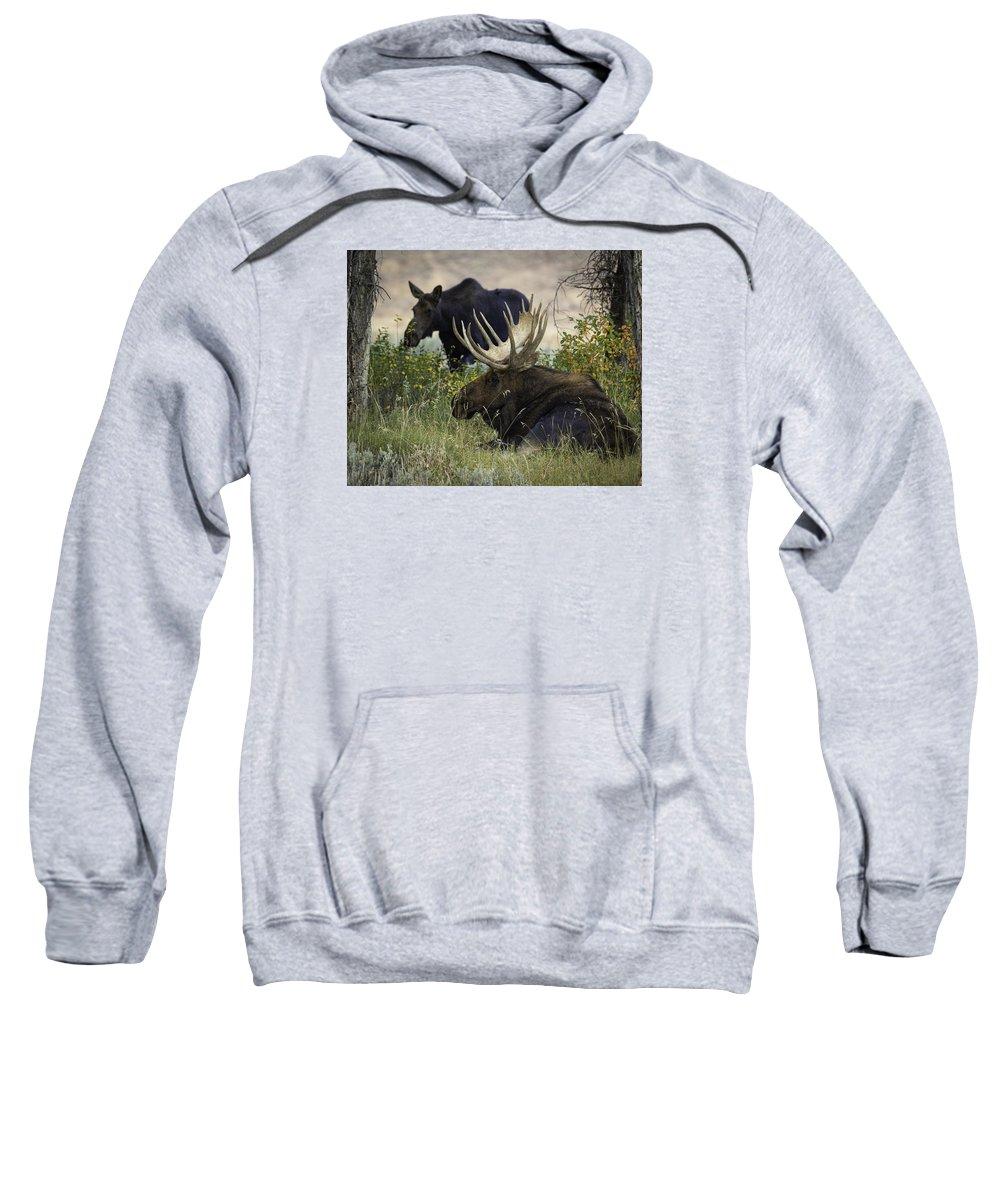 Tetons Sweatshirt featuring the photograph Standing Beside His Majesty by Elizabeth Eldridge