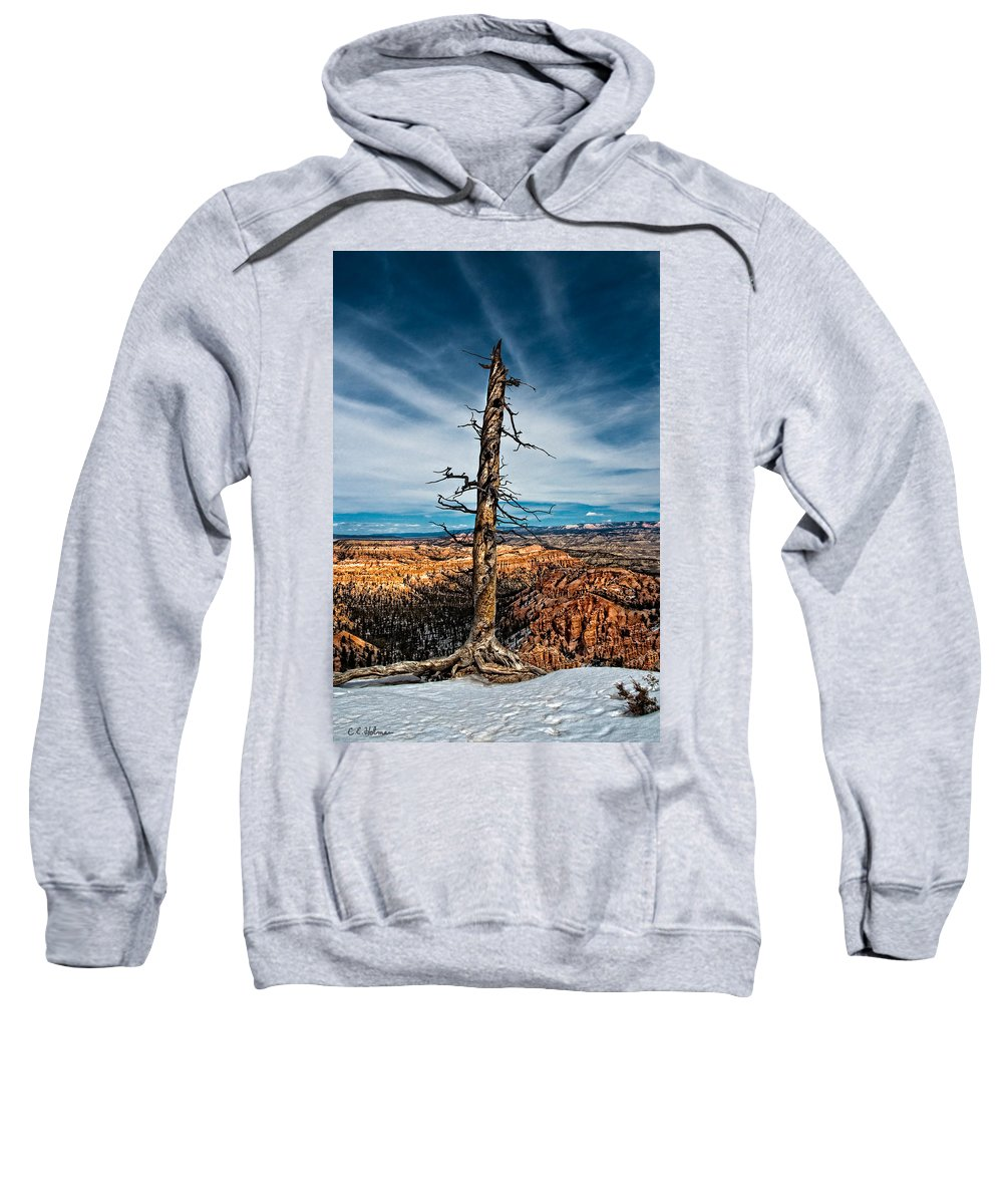 Art Sweatshirt featuring the photograph Standing Regardless by Christopher Holmes