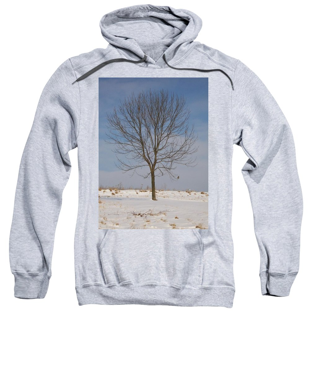 Tree Sweatshirt featuring the photograph Standing Tall by Sara Raber
