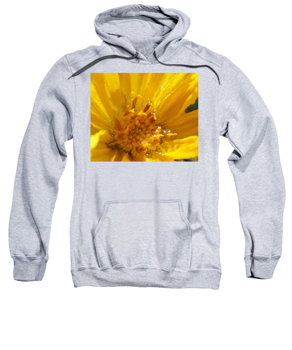 Goldeneye Sweatshirt featuring the photograph Starry Goldeneye by Heather Coen