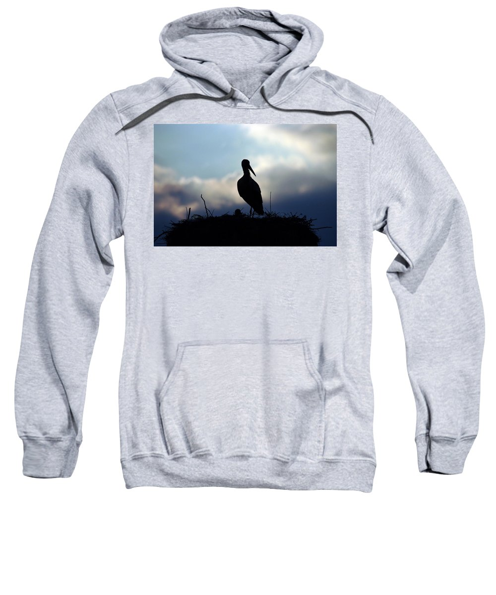 Stork Sweatshirt featuring the photograph Stork In Evening Light by Cliff Norton