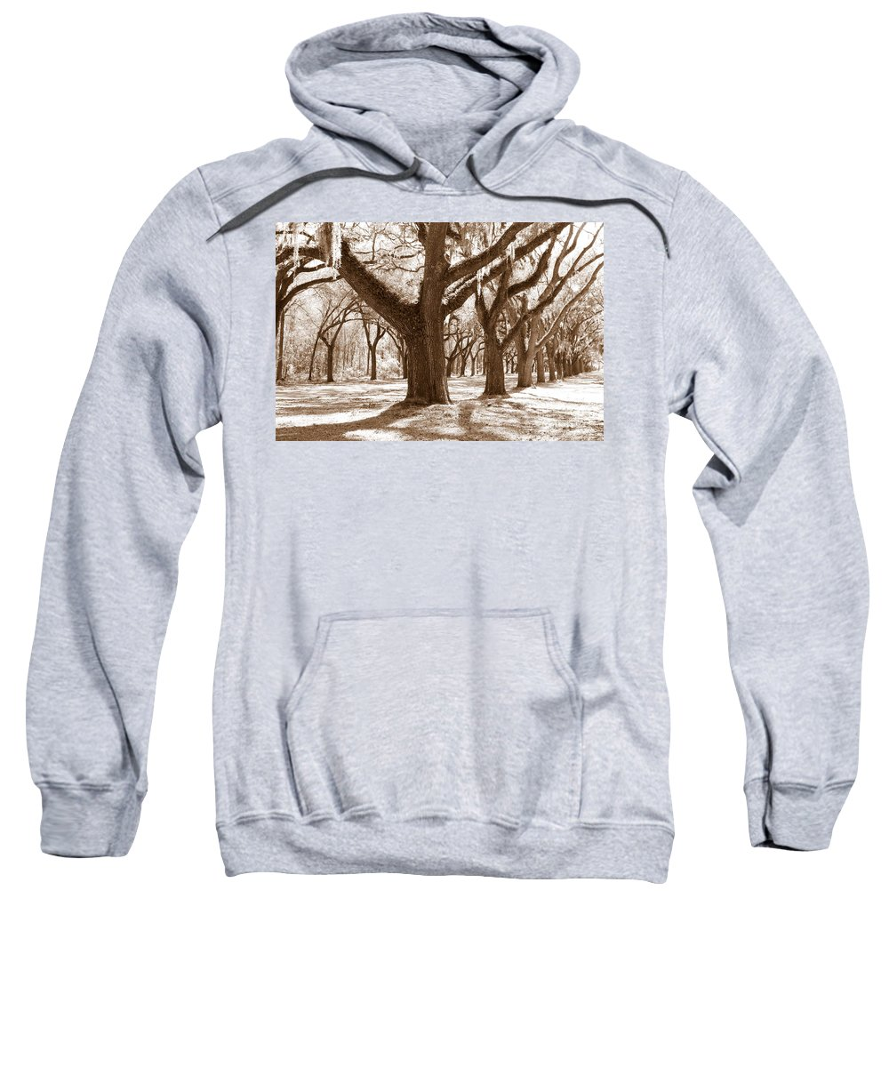 Sepia Sweatshirt featuring the photograph Strong And Proud In The South by Carol Groenen