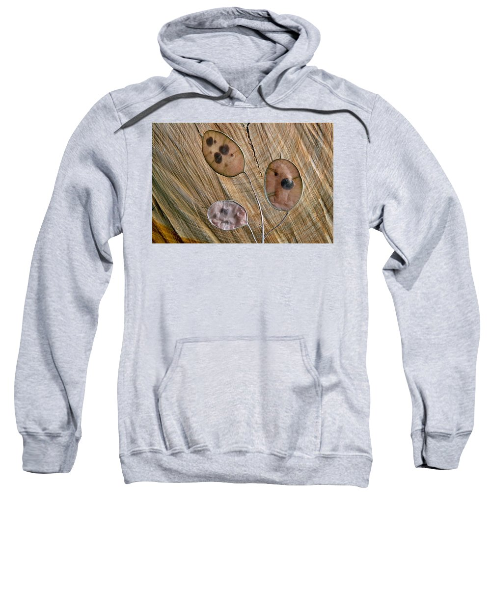 Structura Sweatshirt featuring the photograph Structura by Manfred Lutzius