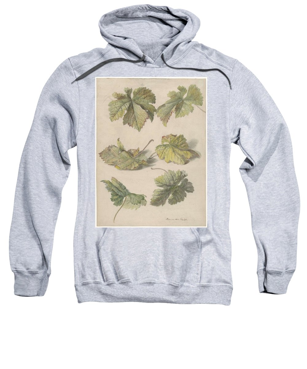 Flower Sweatshirt featuring the painting Studies Of Vine Leaves, Willem Van Leen, 1796 by Willem van Leen