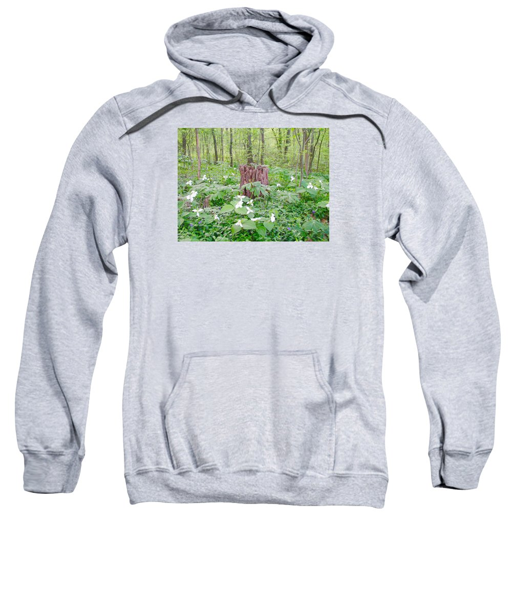 Trees Sweatshirt featuring the photograph Stump By The Trilliums by Beth Tidd
