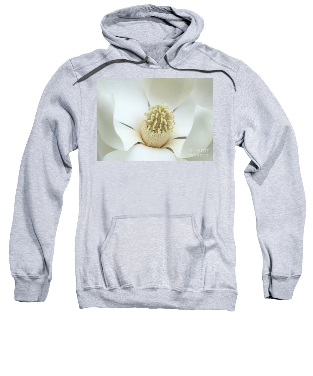 Magnolia Sweatshirt featuring the photograph Subtle Southern Magnolia by Carol Groenen