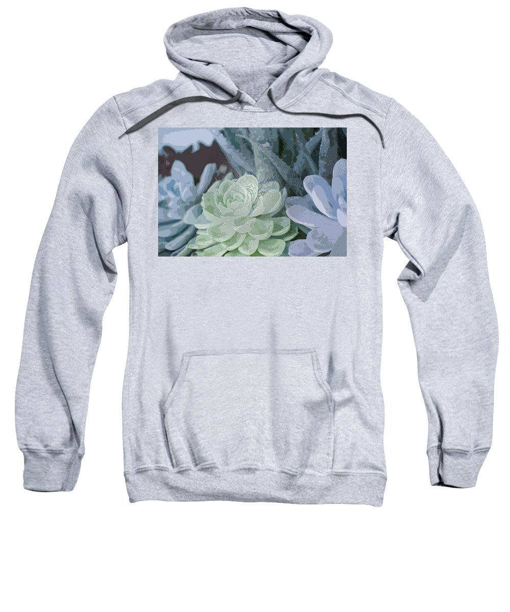 Century Plant Sweatshirt featuring the photograph Succulents 2 by Linda Dunn