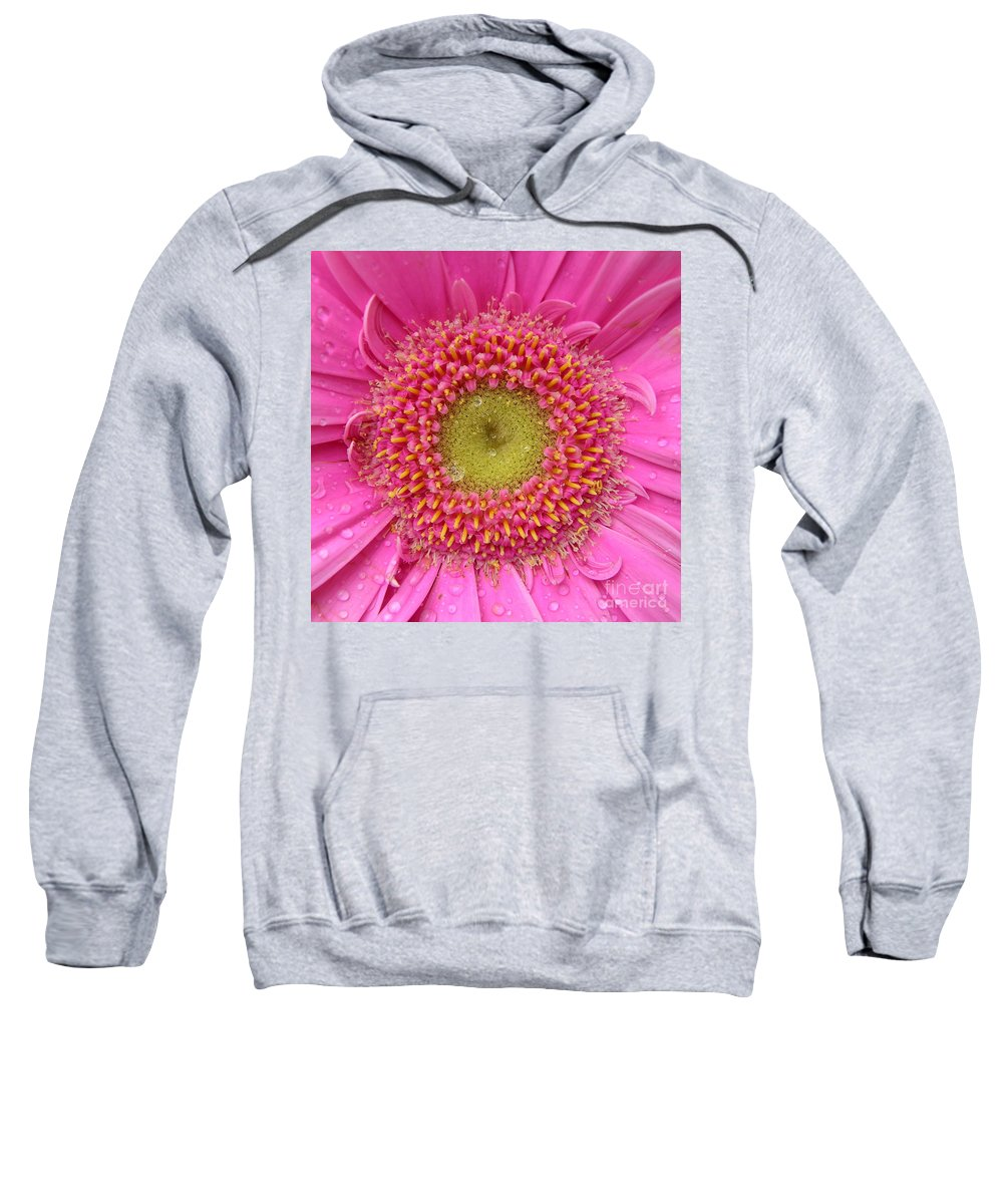 Pink Flower Sweatshirt featuring the photograph Summer Glory by Carol Groenen