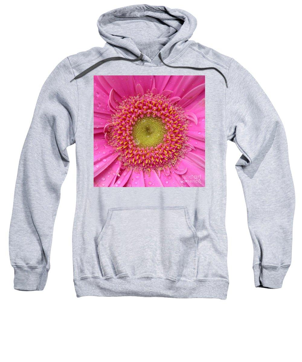Pink Flower Sweatshirt featuring the photograph Summer Glory by Carol Groenen