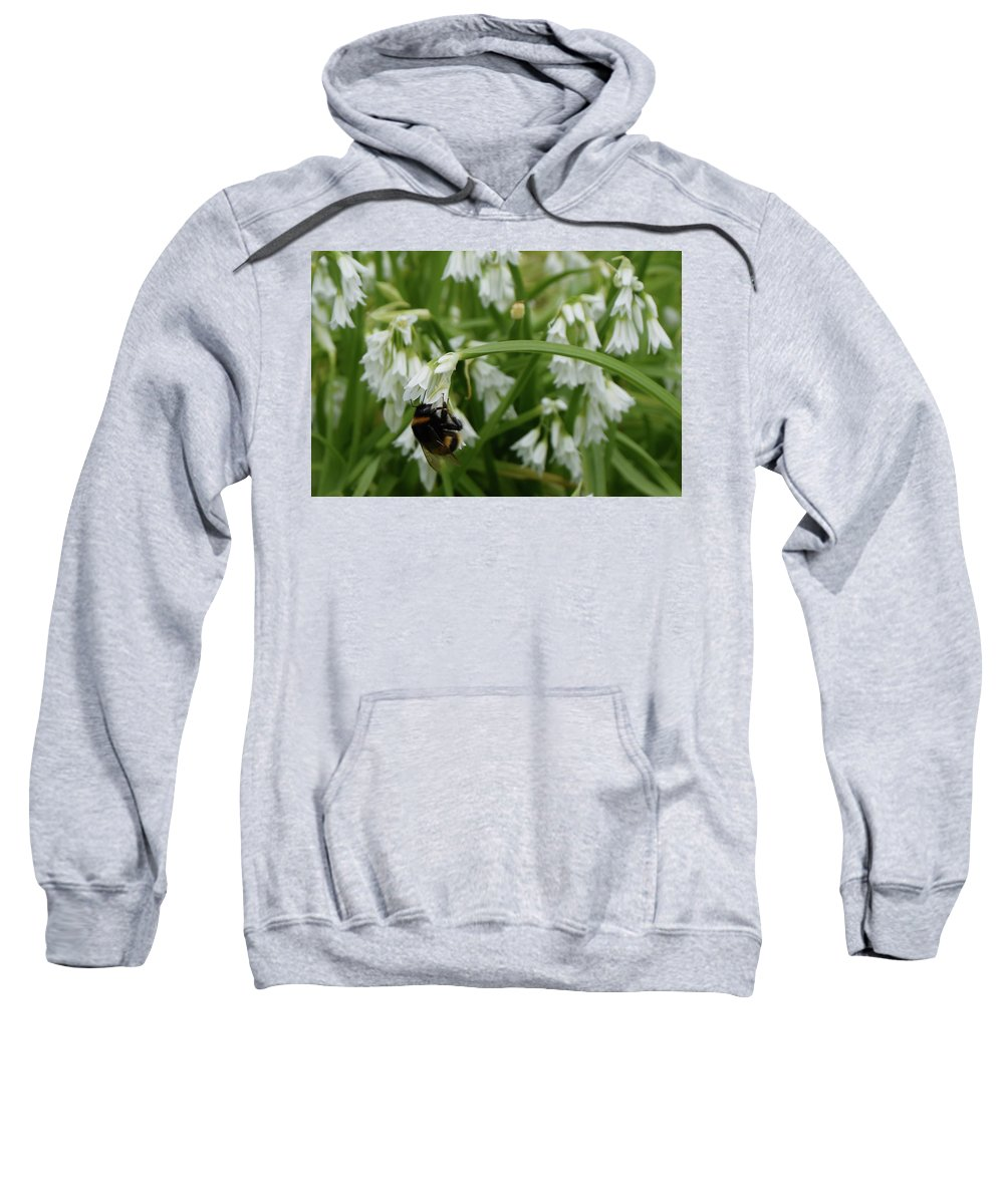 Bee Sweatshirt featuring the photograph Summertime by Allan Charlton