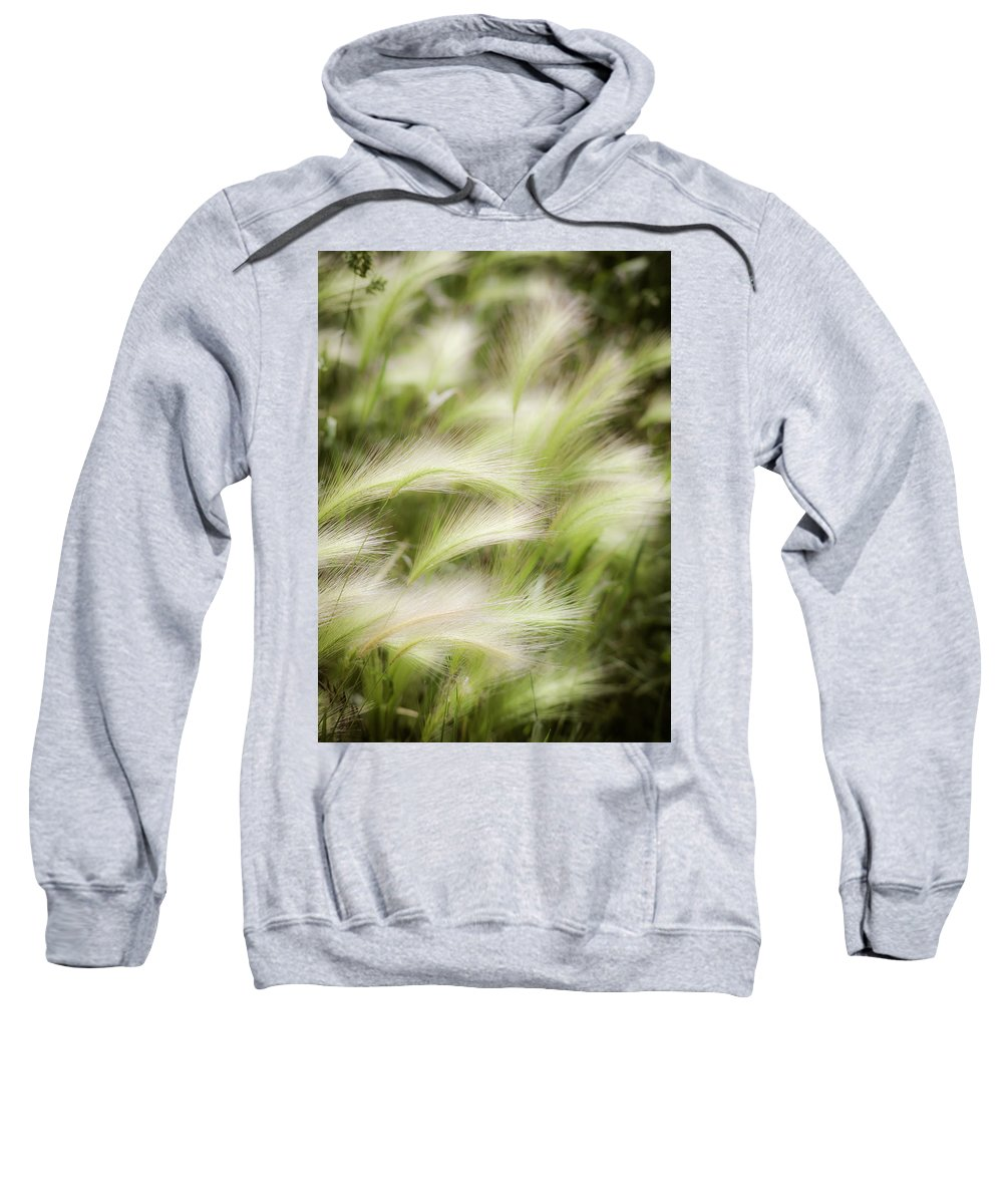 Soft Sweatshirt featuring the photograph Summertime by Marilyn Hunt