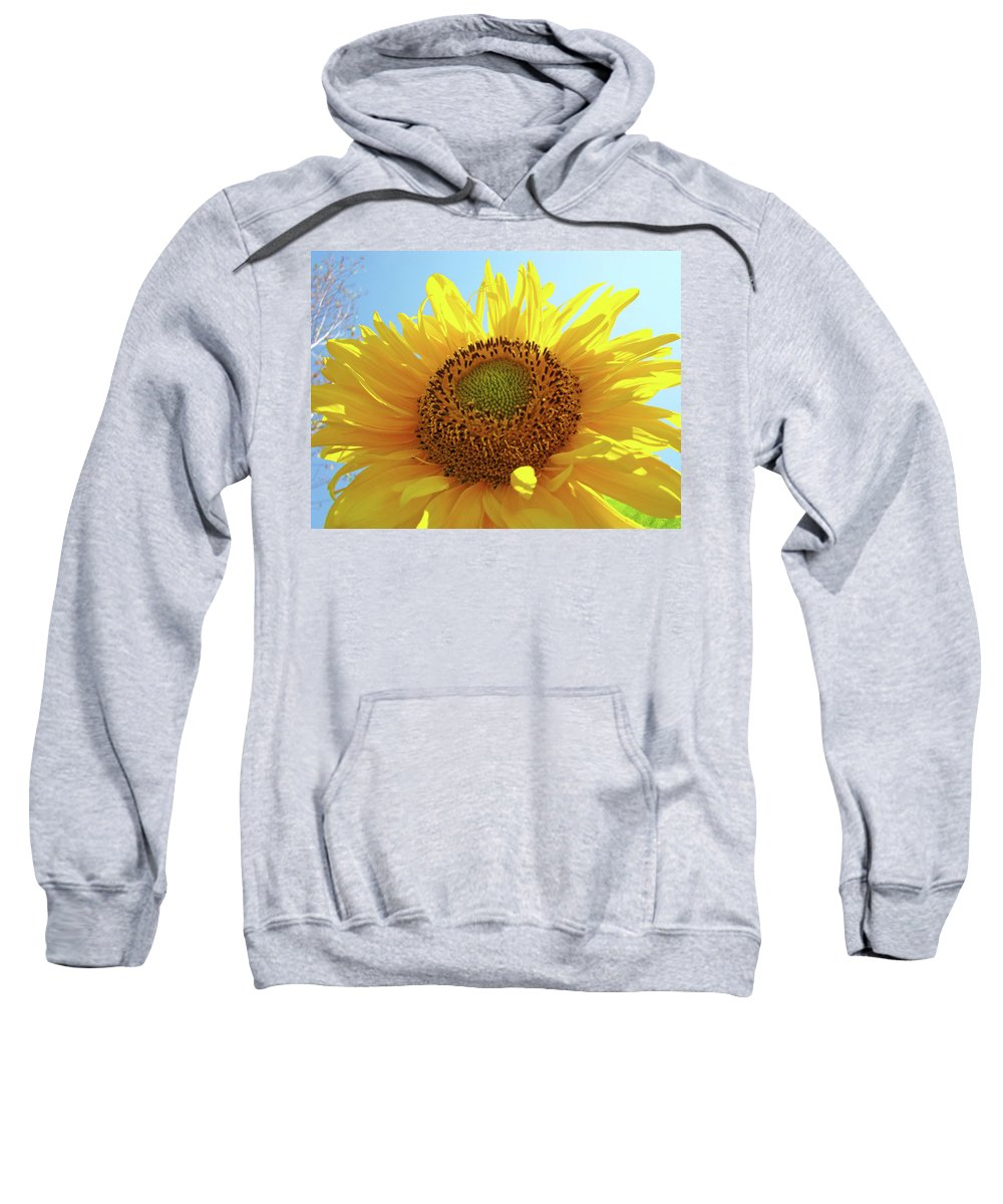 Sunflower Sweatshirt featuring the photograph Sun Flowers Art Sunflower Giclee Prints Baslee Troutman by Baslee Troutman