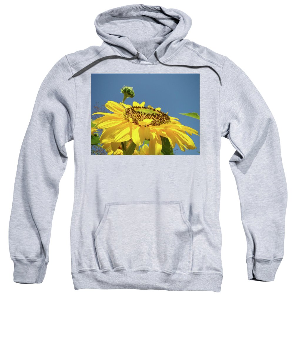 Sunflower Sweatshirt featuring the photograph Sun Flowers Summer Sunny Day 8 Blue Skies Giclee Art Prints Baslee Troutman by Baslee Troutman