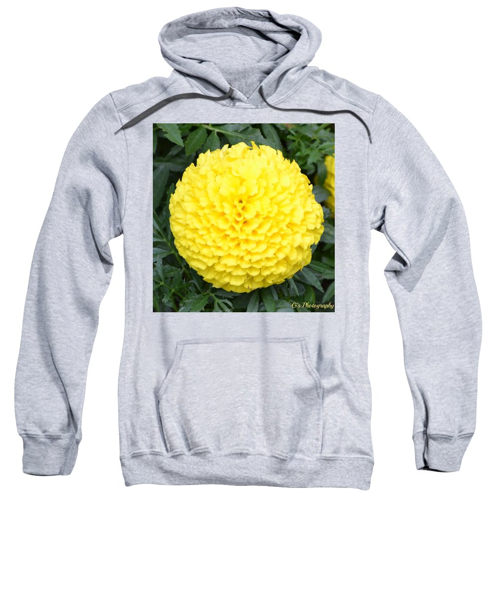 Floral Sweatshirt featuring the photograph Sunburst by Laurie Glowacki