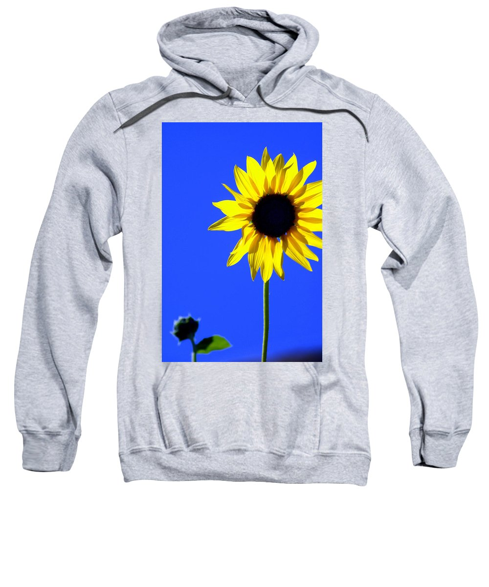 Flowers Sweatshirt featuring the photograph Sunflower 2 by Marty Koch