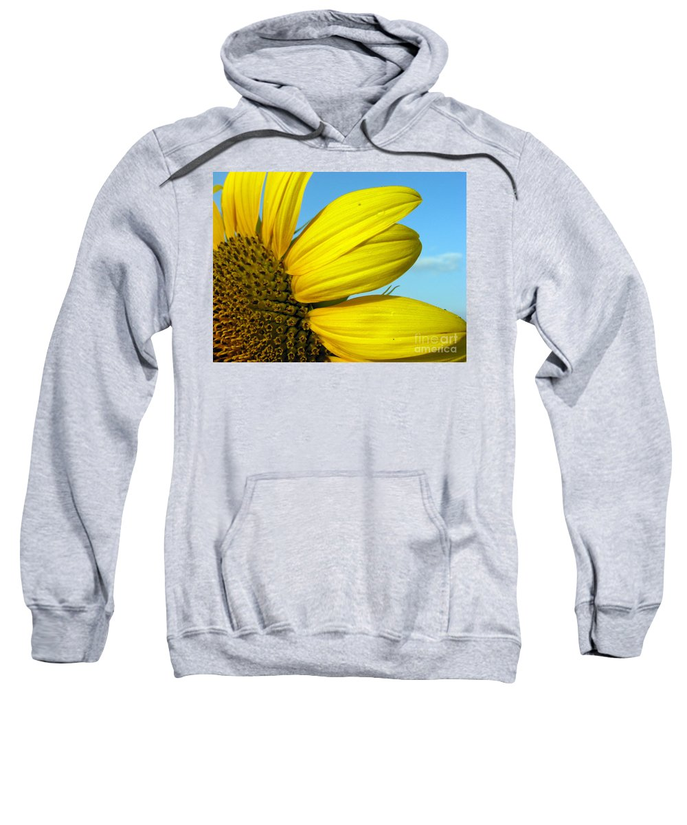 Sunflowers Sweatshirt featuring the photograph Sunflower by Amanda Barcon