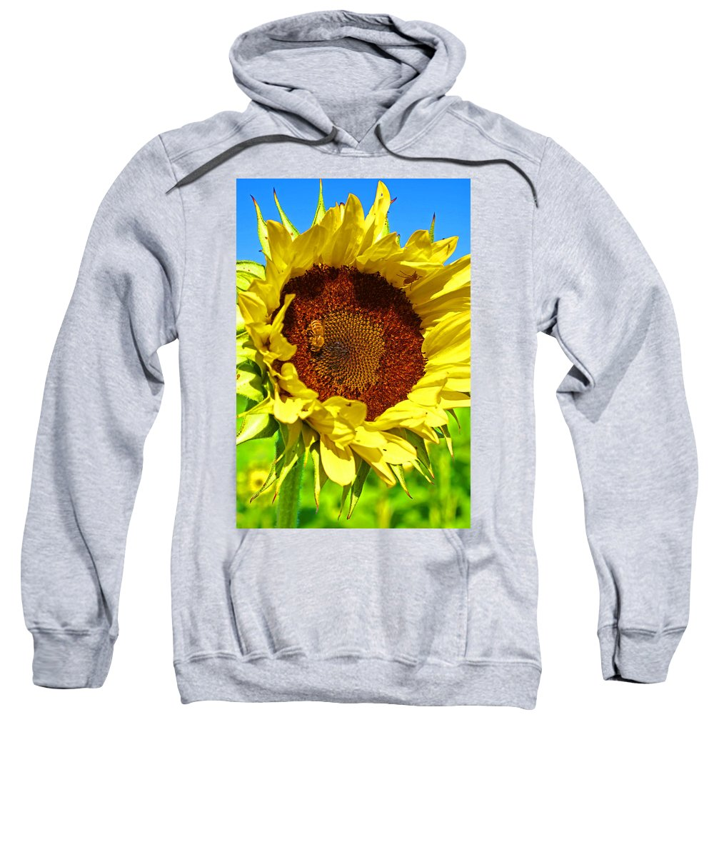 Pastoral Sweatshirt featuring the photograph Sunflower And Bee by Heather Coen