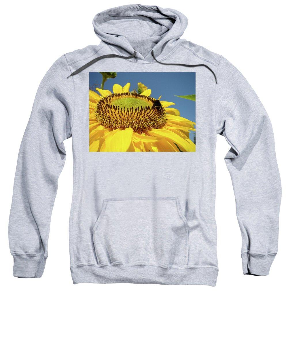 Sunflower Sweatshirt featuring the photograph Sunflower Art Prints Honey Bee Sun Flower Floral Garden by Baslee Troutman