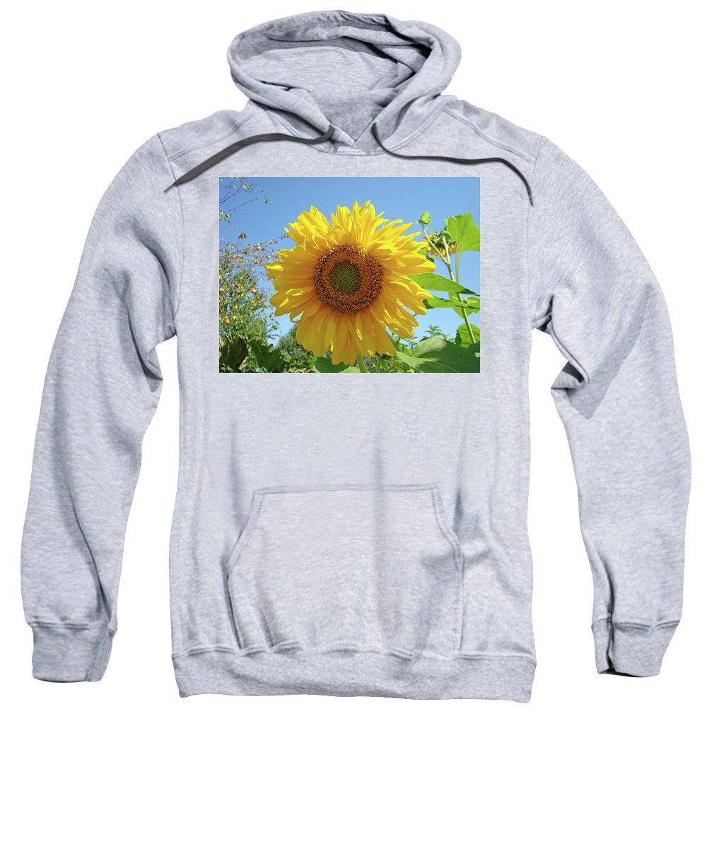 Sunflower Sweatshirt featuring the photograph Sunflower Art Prints Sun Flower 2 Giclee Prints Baslee Troutman by Baslee Troutman