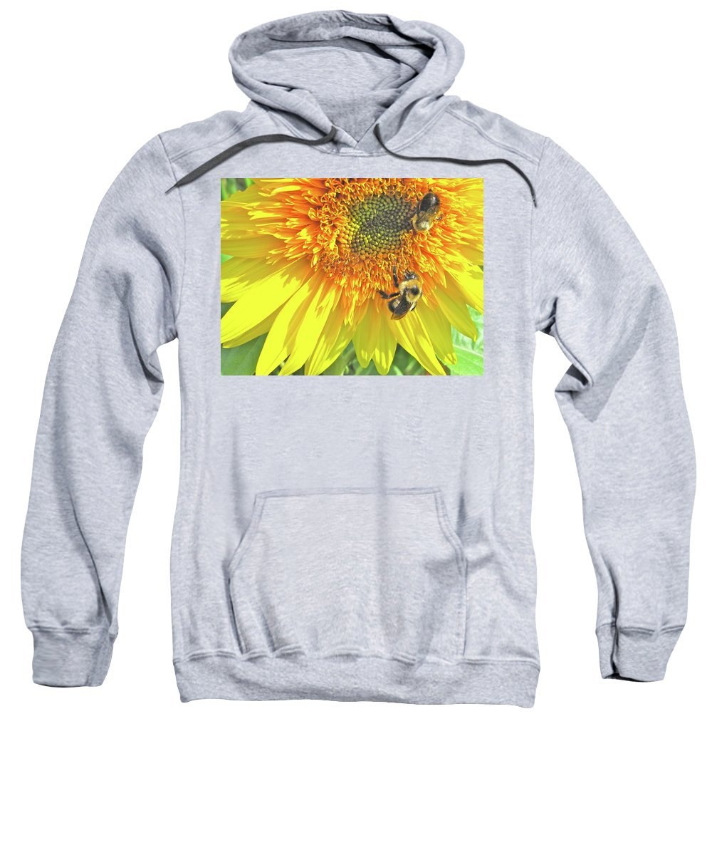 Sunflower Sweatshirt featuring the photograph Sunflower Bees by Kate D