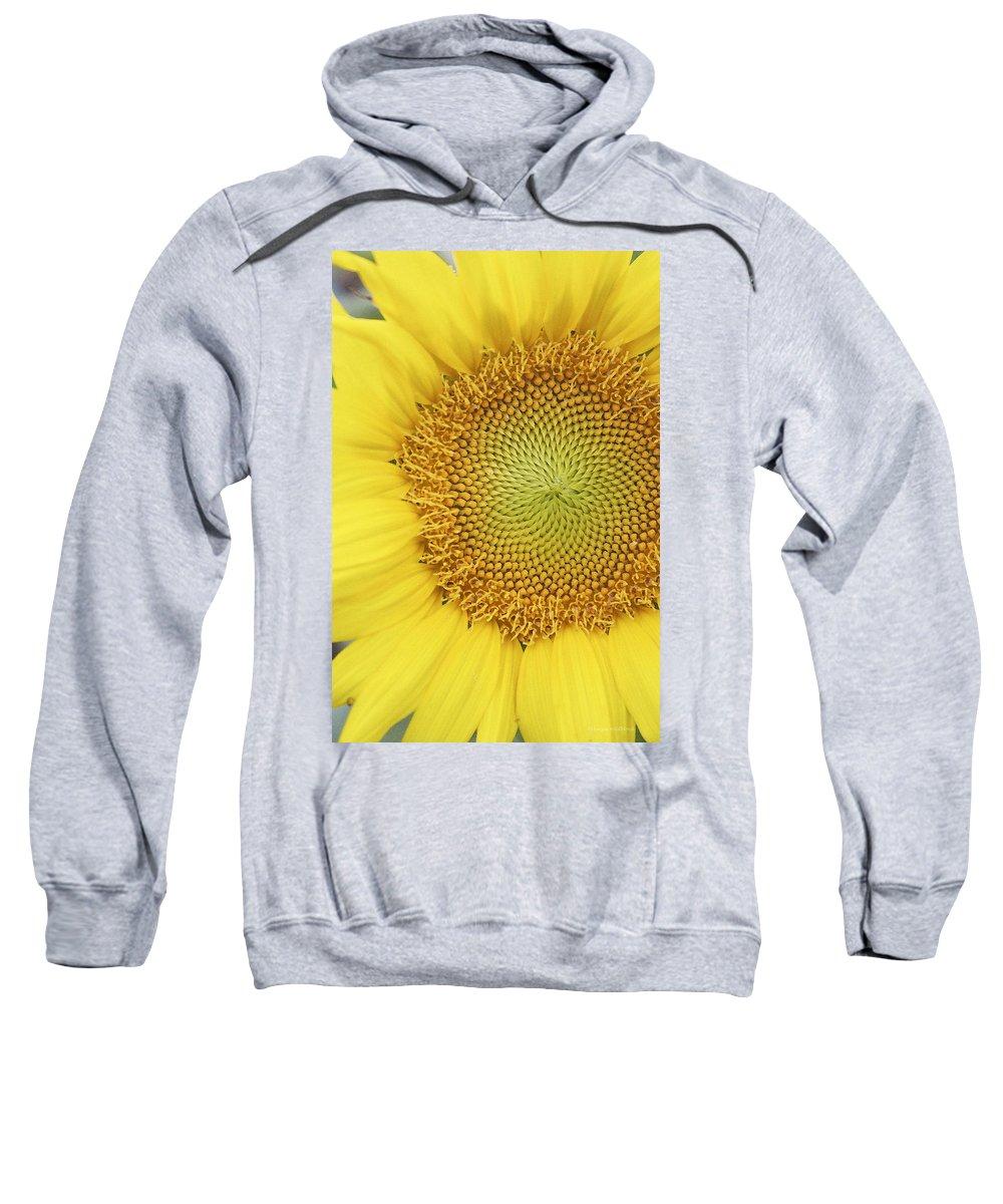 Sunflower Sweatshirt featuring the photograph Sunflower by Margie Wildblood