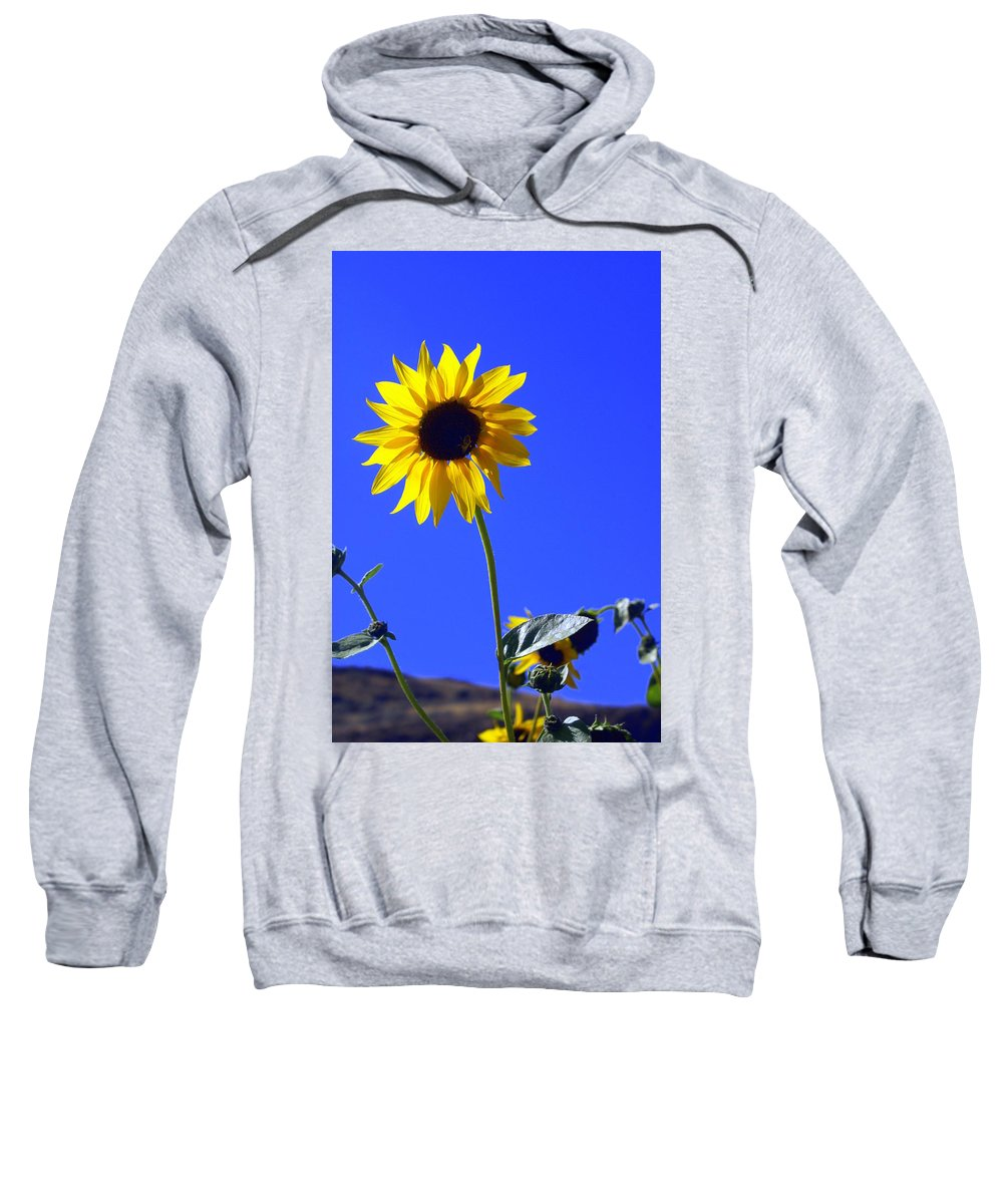 Flowers Sweatshirt featuring the photograph Sunflower by Marty Koch