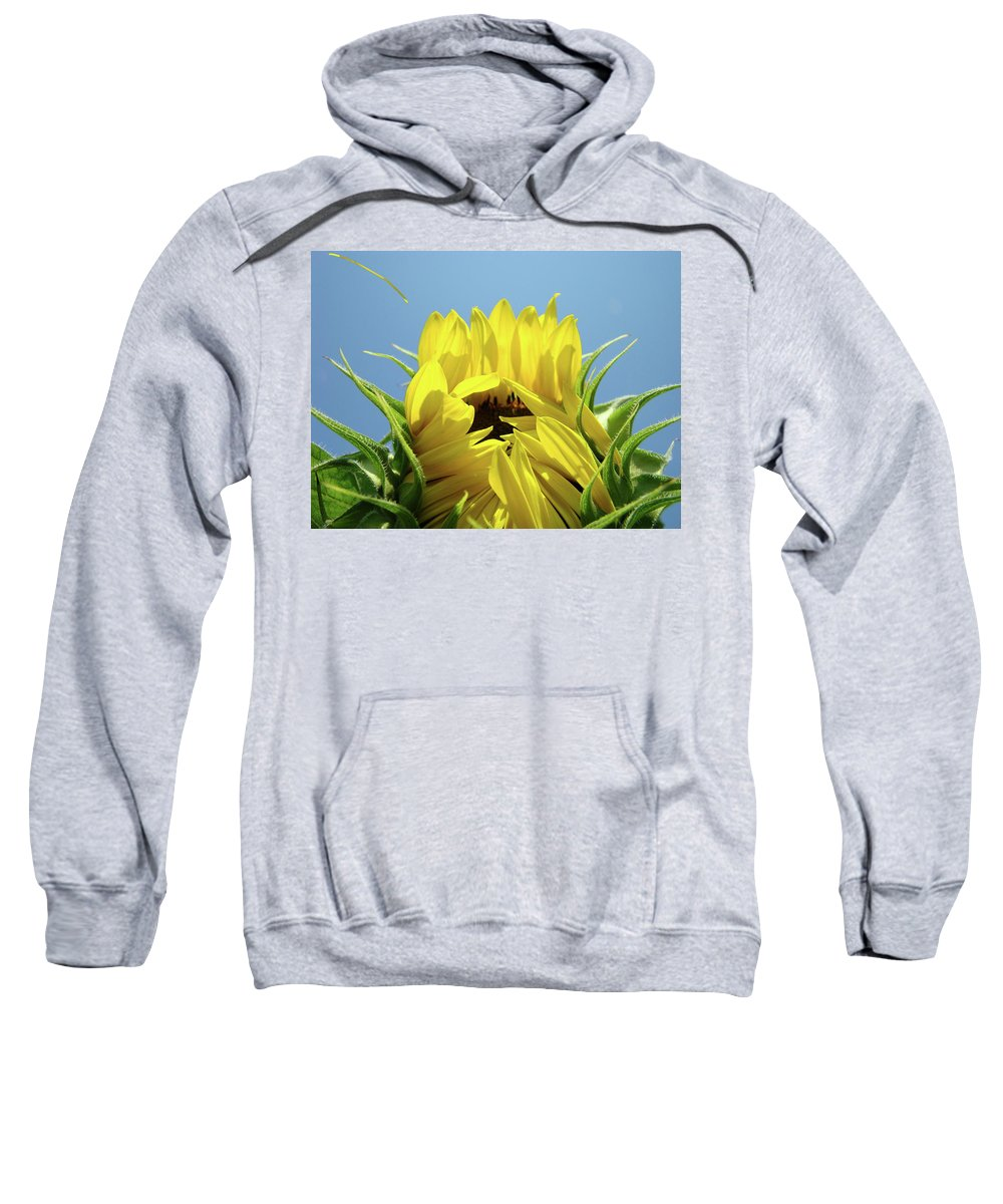 Sunflower Sweatshirt featuring the photograph Sunflower Opening Sunny Summer Day 1 Giclee Art Prints Baslee Troutman by Baslee Troutman