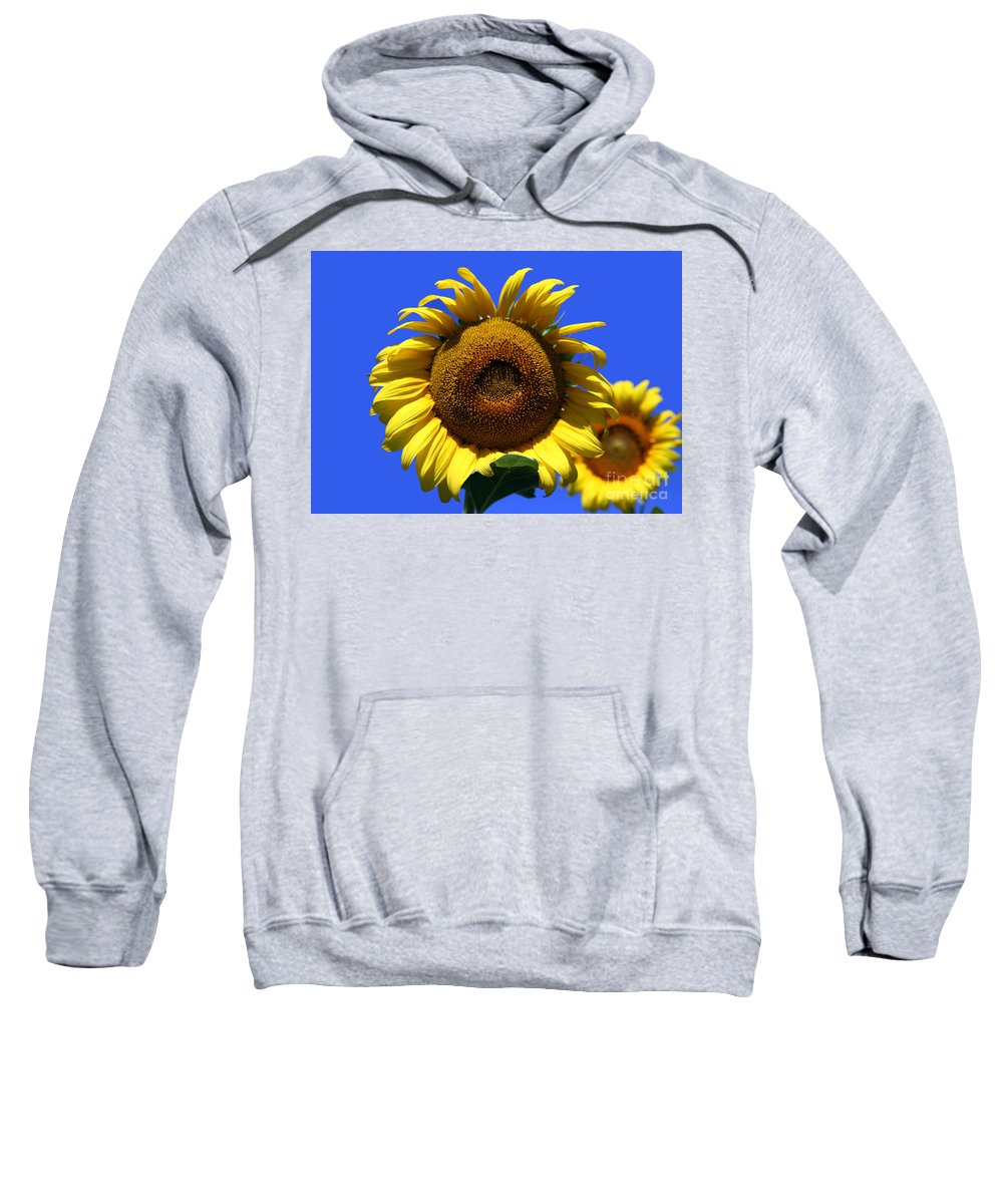 Sunflowers Sweatshirt featuring the photograph Sunflower Series 09 by Amanda Barcon