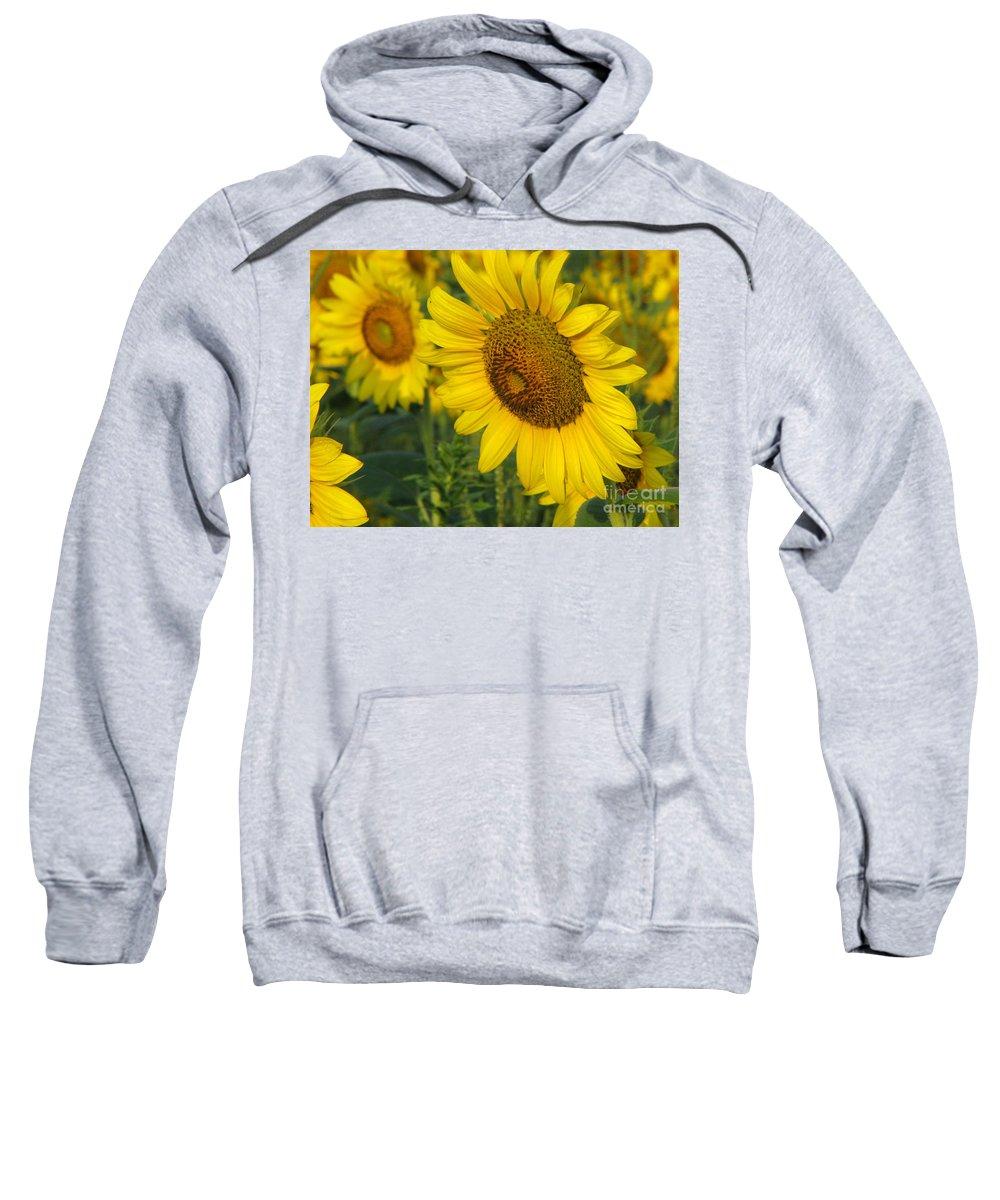 Sunflowers Sweatshirt featuring the photograph Sunflower Series by Amanda Barcon